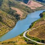 コア渓谷とシエガ・ベルデの先史時代の岩絵遺跡群 / Prehistoric Rock-Art Sites in the Côa Valley and Siega Verde