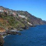 マデイラ島の照葉樹林 / Laurisilva of Madeira