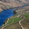 アルト・ドウロ・ワイン生産地域 / Alto Douro Wine Region
